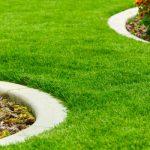 bordure-pelouse