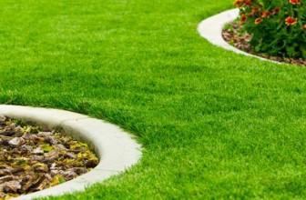 Bordure de pelouse : bien choisir sa bordure